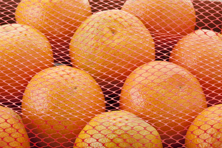 Tangerines Covered In Net,Close Up LANG_EVOIMAGES
