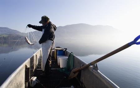 net: Austria,Mondsee,Fisherman Caught A Fish In Fishing Net