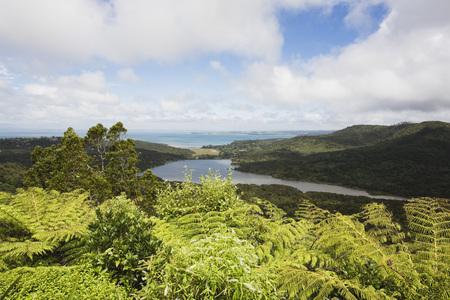 New Zealand,North Island,View Of Waitakere Ranges Regional Park