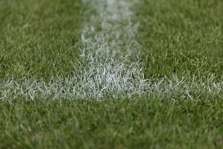 Europe,Germany,View Of Penalty Area Of Soccer Field