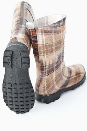 Rubber Boots On White Background LANG_EVOIMAGES