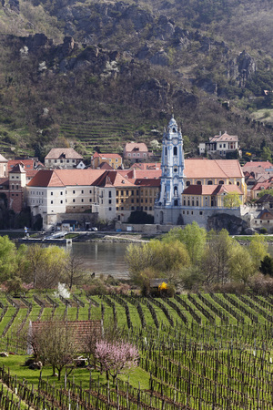 Austria,Lower Austria,Wachau,Duernstein,View Of Town With Danube River And Vineyard In Foreground LANG_EVOIMAGES