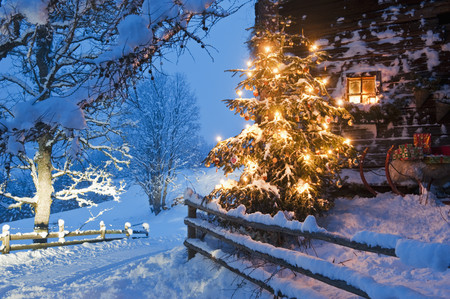 Austria,Salzburg Country,Flachau,View Of Illuminated Christmas Tree With Sleigh In Front Of Alpine Hut At Dusk LANG_EVOIMAGES