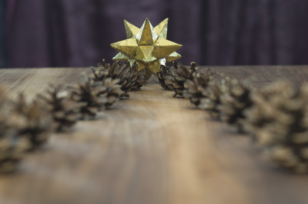 Close Up Of Pine Cones Golden Star