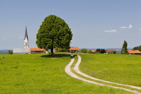 Germany,Bavaria,Irschenberg,View Of Tilia Tree And Dirt Track With Village In Background