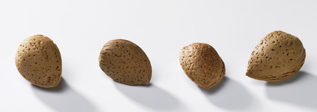 Almonds In Row On White Background