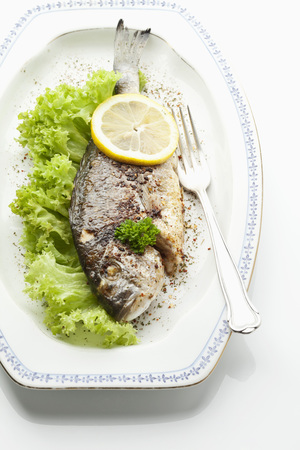 Garnished Gilthead Bream In Plate On White Background LANG_EVOIMAGES