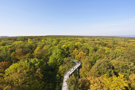 Germany,Thuringia,Hainich,View Of Hainich National Park
