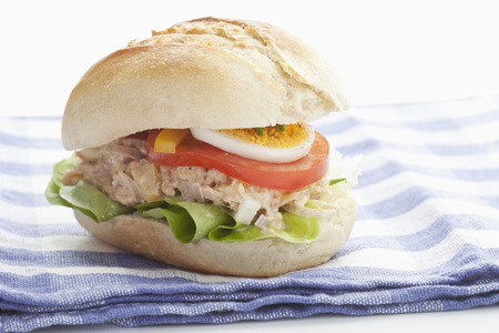 Tuna Sandwich On Napkin,Close Up LANG_EVOIMAGES