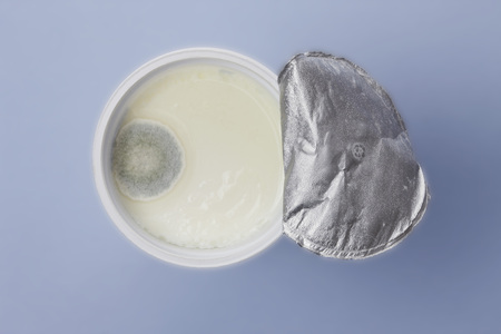 Mould In Yogurt Cup On Coloured Background