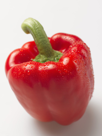 Red Bell Pepper On White Background,Close Up