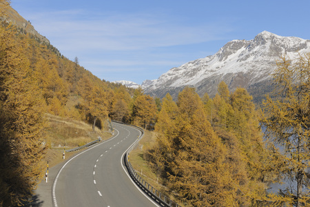 Switzerland,Road At Lake Sils With Trees In Orange Autumn And Mountains LANG_EVOIMAGES