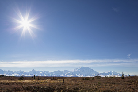 Usa,Alaska,View Of Mount Mckinley With Tundra In Autumn At Denali National Park