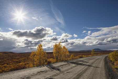 Usa,Alaska,View Of Denali Highway In Autumn