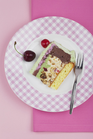 Plate Of Ice Cream Cake On Pink Background LANG_EVOIMAGES