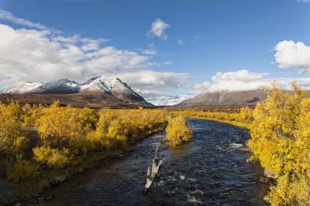 Usa,Alaska,View Of Landscape In Autumn,Alaska Range In Background