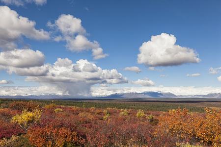 Usa,Alaska,Landscape Along Denali Highway In Autumn With Alaska Range