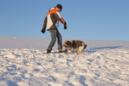 Germany,Bavaria,English Springer Spaniel And Dog Owner Playing In Snow LANG_EVOIMAGES