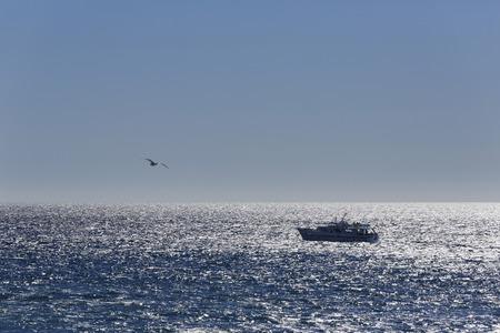 Spain,Excursion Boat At La Gomera LANG_EVOIMAGES