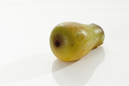 Marzipan As Pear On White Background,Close Up