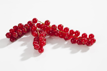 Red Currants On White Background, Close Up