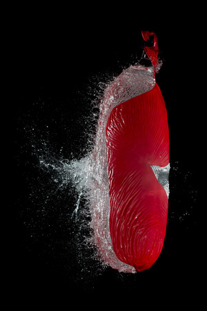 Red Waterballoon Bursting Against Black Background,Close Up