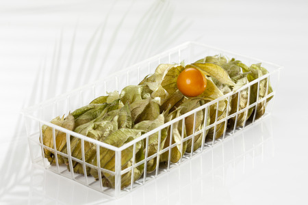 Physalis In Plastic Box,Close Up