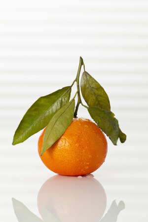 Fresh Clementine On White Background, Close Up