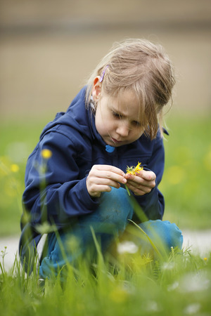 Germany,Baden Wuerttemberg,Girl examining flower,close up LANG_EVOIMAGES