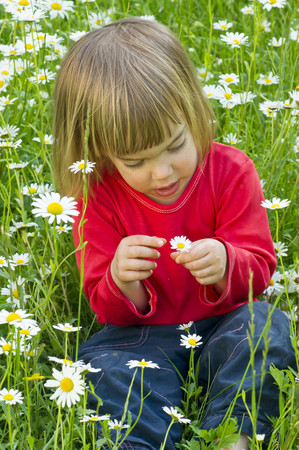 Germany,Girl sitting in flower field LANG_EVOIMAGES