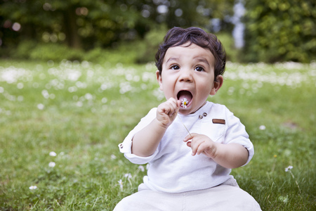 Baby boy sitting on grass and holding daisy flower to his mouth LANG_EVOIMAGES