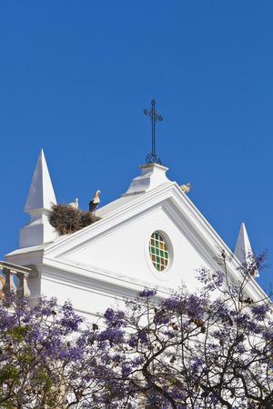 Portugal,Faro,Storks perching in birds nest on Misericordia Church LANG_EVOIMAGES