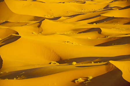 Africa,Morocco,View of Erg Chebbi dunes