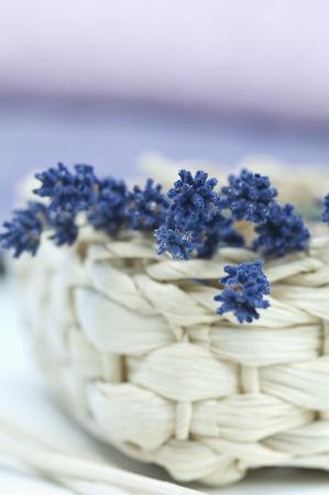 Twig of lavender on a basket,close-up