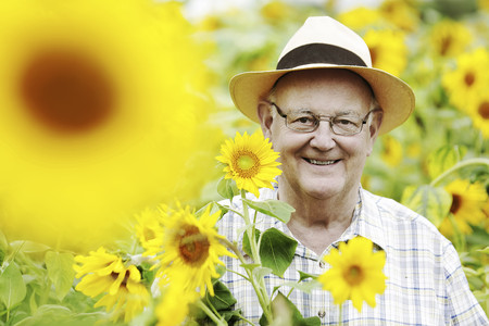 Germany,Cologne,senior with sunflowers LANG_EVOIMAGES