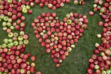 Germany,Schleswig-Holstein,Heart shaped with apples