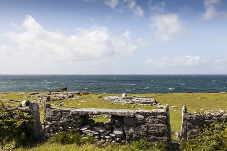 Ireland,County Clare,Stone wall at teh ocean near Doolin