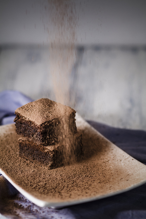 Brownies on plate LANG_EVOIMAGES