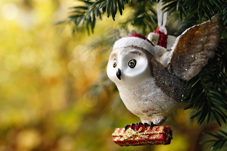 Germany,Minden,christmas bauble,owl with present