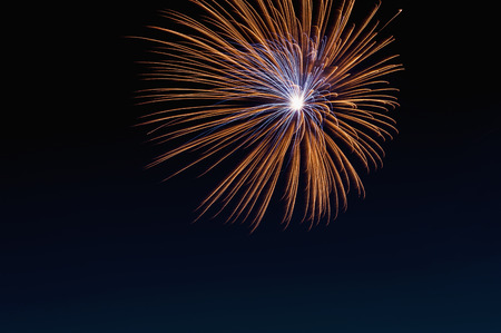 Fireworks exploding in the sky at night