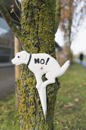 Prohibition sign for dog owners at tree trunk LANG_EVOIMAGES