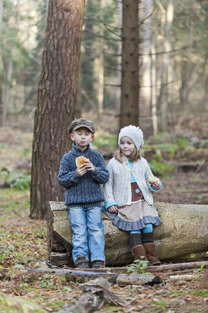 Germany,North Rhine-Westphalia,Moenchengladbach,Scene from fairy tale Hansel and Gretel,brother and sister eating bread in the woods