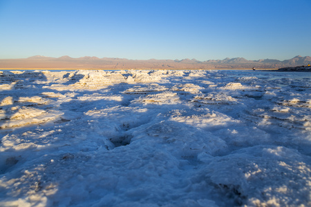 Chile,Atacama Desert,Laguna Tebinquinche