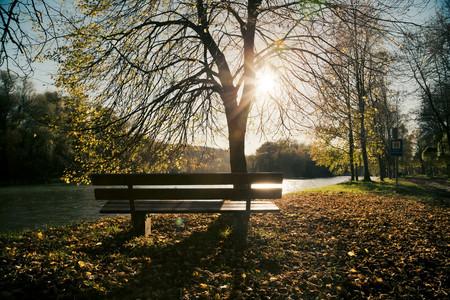 Germany,Bavaria,Landshut,autumn atmosphere at Isar river