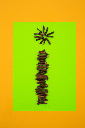 Letter I formed of short pieces twigs of at green and yellow background,studio shot LANG_EVOIMAGES