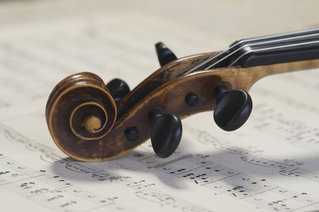 Violin scroll of antique violin lying on musical notes