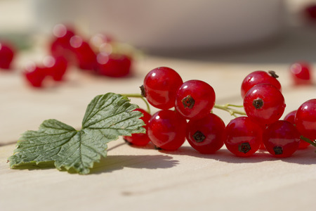Leaf and red currants on wood, close-up