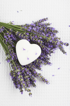 Lavender flowers (Lavendula) and white heart shaped candle on white ground