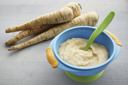 Bowl of parsnip puree and parsnips on grey wooden table LANG_EVOIMAGES