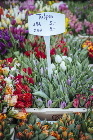 Germany, Baden-Wuerttemberg, Freiburg, market